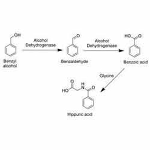 SOLVENTS   P K CHLOROCHEM PVT LTD   CHEMICAL MANUFACTURING